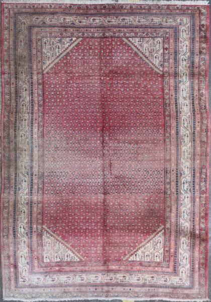 R551 Persian Carpet