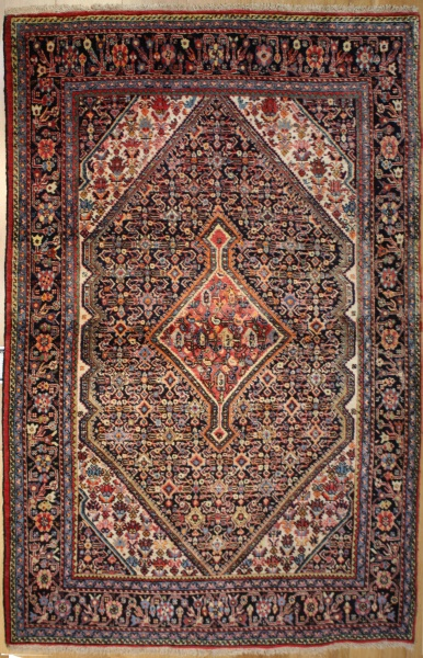 R8617 Beautiful Hand Woven Persian Rugs