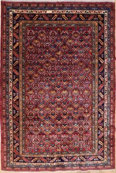 R6719 Caucasian Shirvan Rug