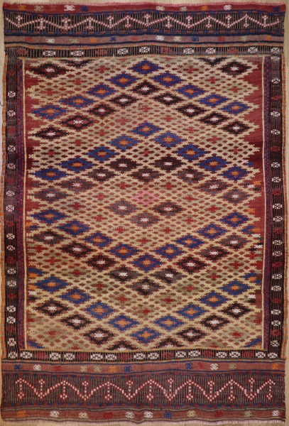 R8769 Flat Weave Kilim rugs