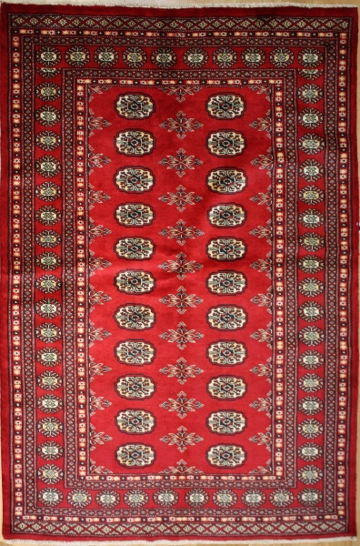 R8637 Traditional Pakistan Bokhara Rug