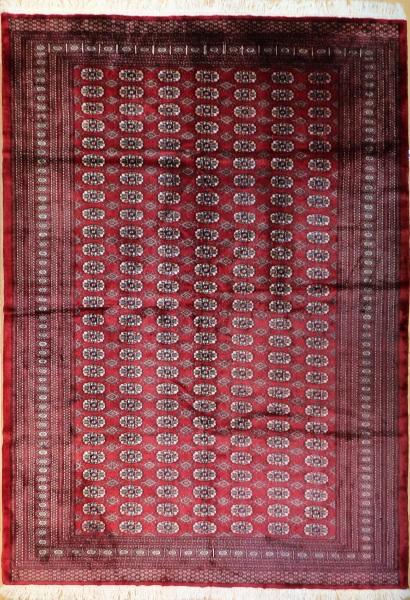 R8638 Traditional Pakistan Bokhara Rug