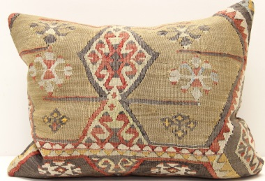 D183 Vintage Kilim Pillow Cover